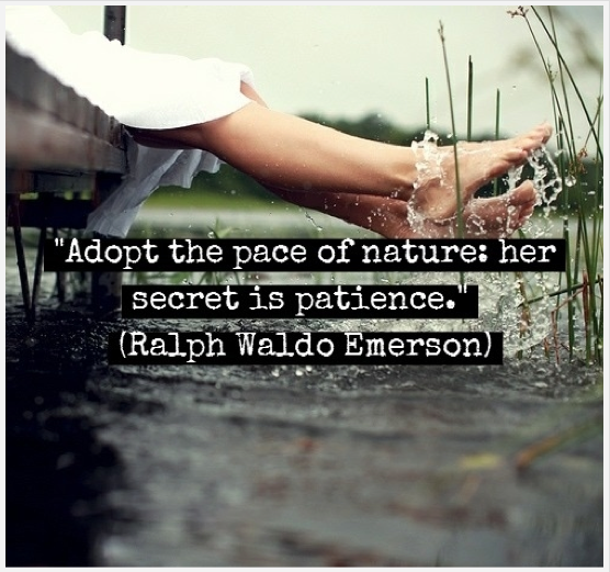 quotes from the essay nature ralph waldo emerson A friend may well be reckoned the masterpiece of nature ralph waldo emerson quotes at enquotes.